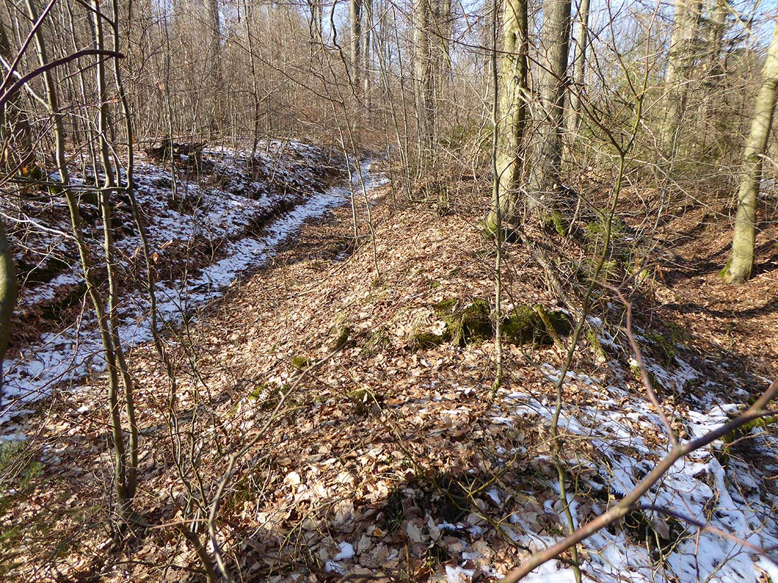 Hohlwegbündel unterhalb der ehemaligen Dorfstelle