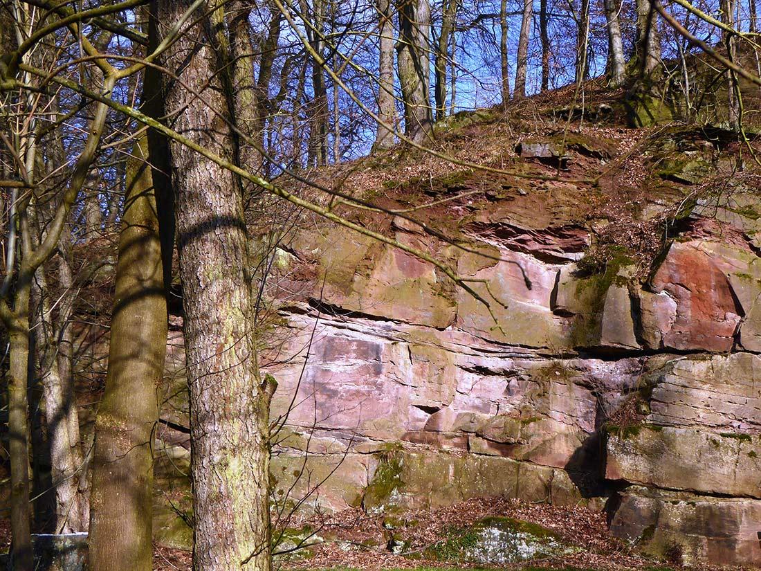 Steinbruch im Bausandstein der Solling-Folge (Trögen)