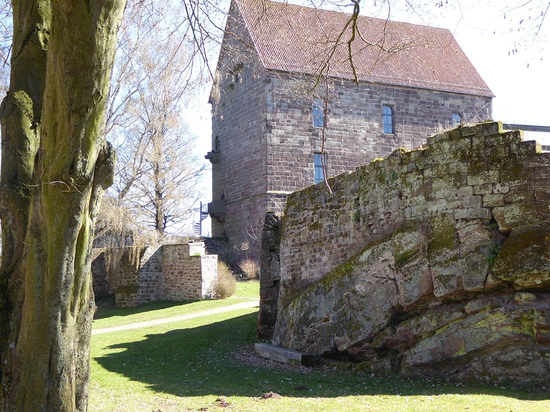 Aufschluss des Buntsandsteins der Solling-Folge an der Burg Hardegsen