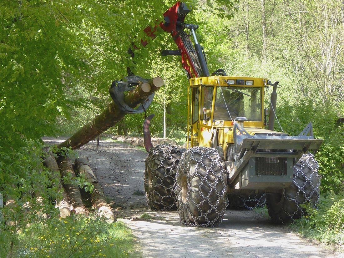 Beim Zusammentragen der Holzstämme wurde früher Holzrückepferde eingesetzt; heute erledigen Maschinen diese Arbeit